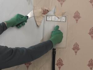 using wallpaper steamer