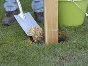 planting pergola uprights