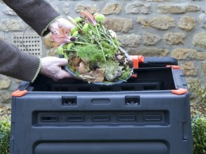 Composting vegetable peelings