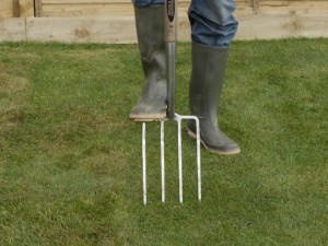 spiking lawn with fork