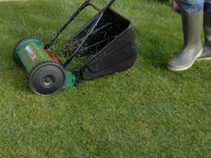 cutting grass with mower