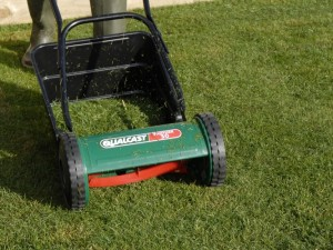 cutting lawn at right angles to first cut