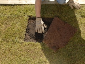 Infilling topsoil under turf