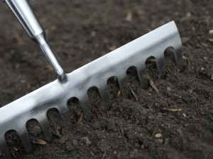 Digging in well-rotted manure