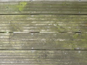 Decking with algae