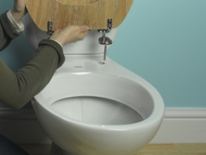 Toilet seat fixing bolts