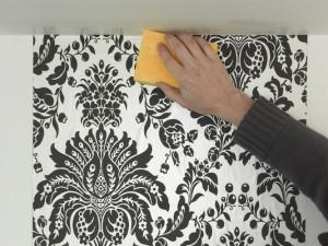 removing wallpaper adhesive