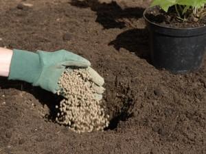 Adding slow release concentrated fertiliser