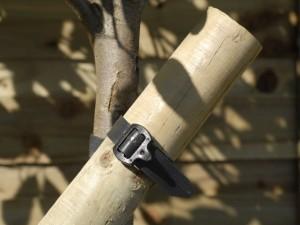 Using tree tie