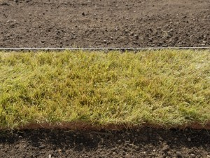 Laying turf with long edges against boundary line